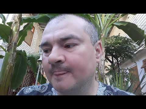 Кирилл Губарев Момент правды Пожертвования и смерть директора Пищи жизни Андрея Крамара