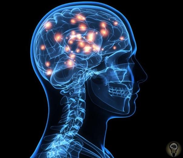 Сознание имеет физическую форму