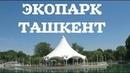 ЭКОПАРК В ТАШКЕНТЕ (старый зоопарк) 💚 ECOPARK IN TASHKENT, UZBEKISTAN