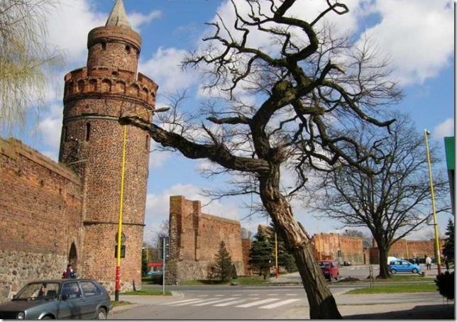 Торунь — сказочный городок в Польше, изображение №5
