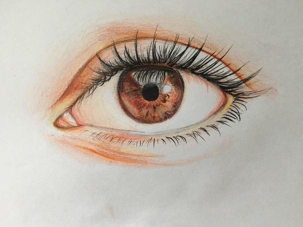 drawings of eyes - HD4032×3024