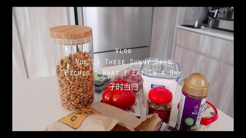 当归Vlog.11 | 这些个天气好的日子:野餐、穿搭、开箱、一天吃什么 | Picnic What I Eat In A Day