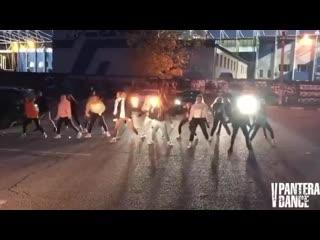 V-pantera_dance