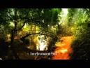 NIGHTWISH Edema Ruh lyrics