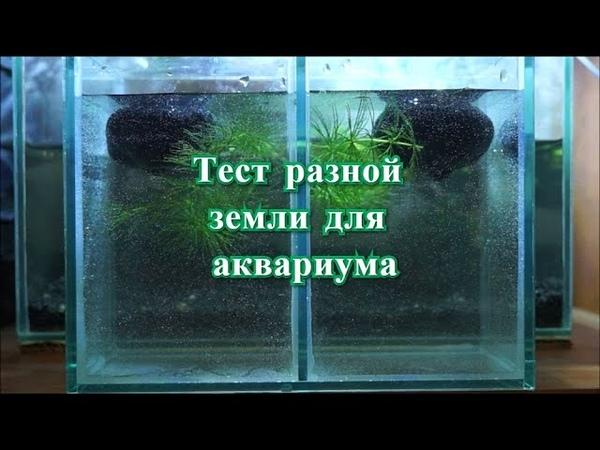 Тест двух видов земли для питательной подложки в аквариум