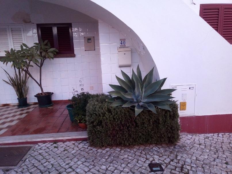 #Португалия 6 Внутреннее и внешнее убранство дома, изображение №9