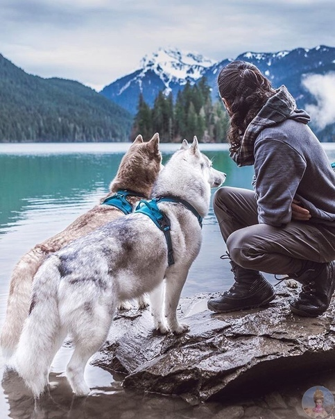 Путешествия с самыми верными друзьями