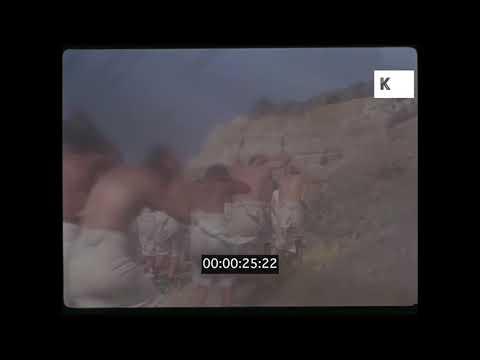 Swarm of Locusts, Biblical Recreation, 35mm