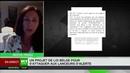 News 16/08/19 Projet de loi sur les lanceurs d'alerte Ca pose un véritable problème démocratie