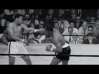 ТОП - 10 самых сумасшедших моментов в боксе