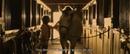 Short Film HORSE 2016 by Evgenia Karlovskaya