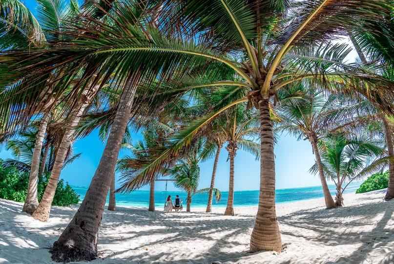 Битва курортов: Мексика или Доминикана?, изображение №2