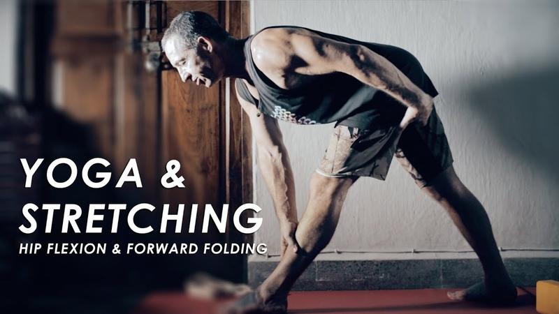 Hip Flexion for Forward Folding - Stretching for Yoga