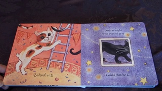 A Carnival of Cats By Charles Ghigna Read Aloud For Kids