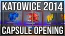 10x KATOWICE 2014 CAPSULE OPENING (THE iBUYPOWER HOLO DREAM)