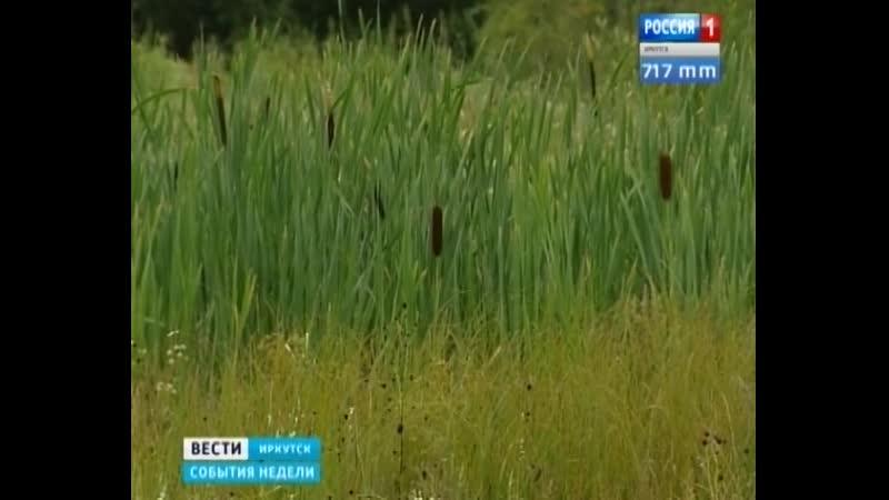 В Иркутске очередь льготников за бесплатной землей растянулась на сотни лет