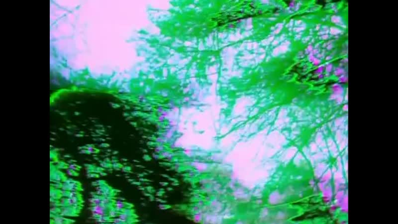 The Cure A Forest Official Video