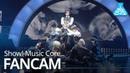 [FANCAM] [190921] SEVENTEEN - 독 : Fear @ Show Music Core