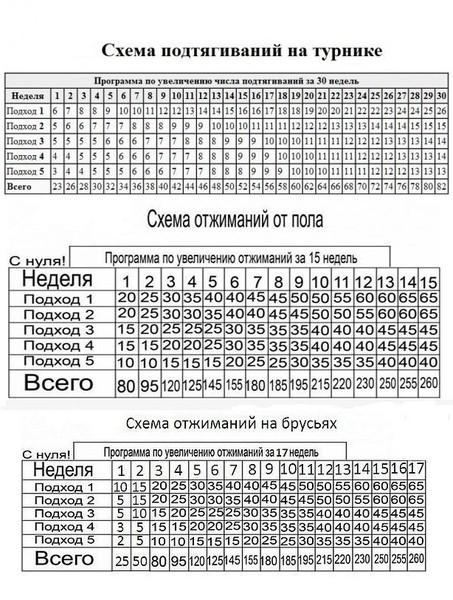 Схема подтягиваний в картинках