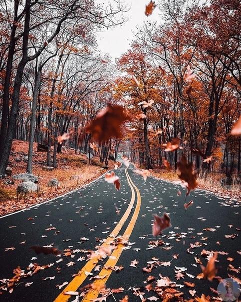 Чудесная осень