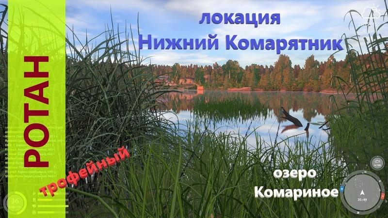 Русская рыбалка 4 озеро Комариное Неожиданный ротан