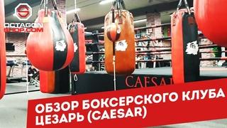 Обзор боксерского клуба Цезарь (Caesar)