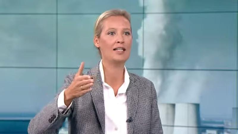 WELT INTERVIEW: Alice Weidel - Regierung verzapft wirtschaftsfeindliche Politik