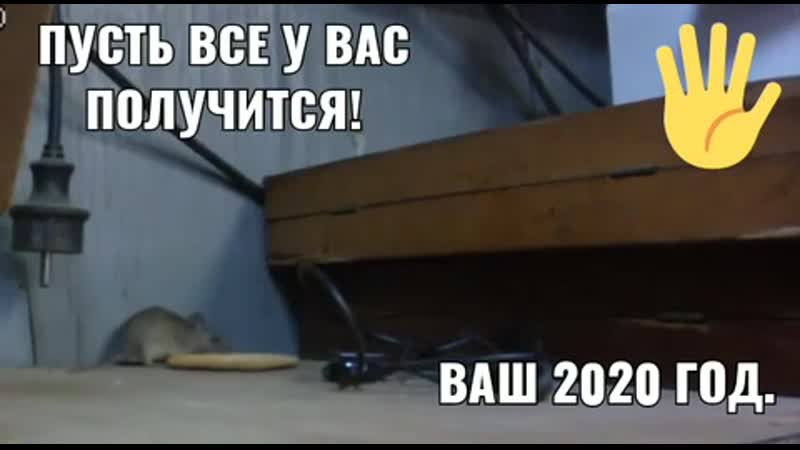 VIDEO 2019 12 30 11 58