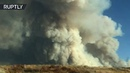Lake Fire | Wall of smoke billows above Lake Hughes in California