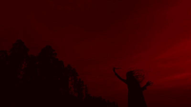 ZKHR feat. Your Schizophrenia - Miserable Land