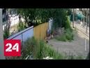 Кража века на 3 5 миллиона находчивые подростки с тачкой хайпанули в интернете Россия 24