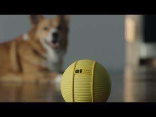 Ballie  Samsung