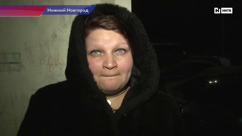 В Нижнем Новгороде собака нашла в сугробе тело женщины