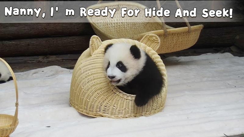 Nanny I'm Ready For Hide And Seek iPanda
