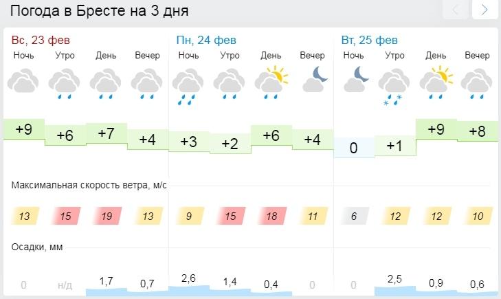 Оранжевый уровень опасности из-за сильного ветра объявлен в Беларуси 24 февраля