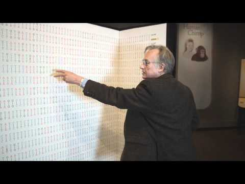 Richard Dawkins Comparing the Human and Chimpanzee Genomes Nebraska Vignettes 3