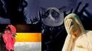 Инквизиция Герцога Кота 12: Фикалии Фикбука по секретным документам