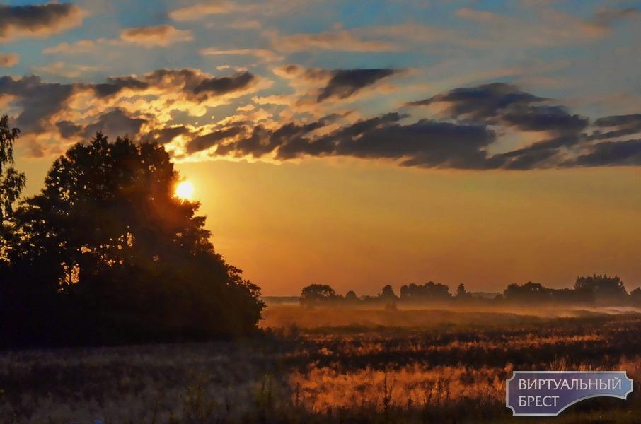 В объективе – поздняя осень. Велопрогулка по окрестностям Жабинки