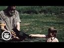 В объективе - животные. Мальчик и ворон (1987)