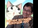 Дзюндзи Ито оценивает анимешных котиков