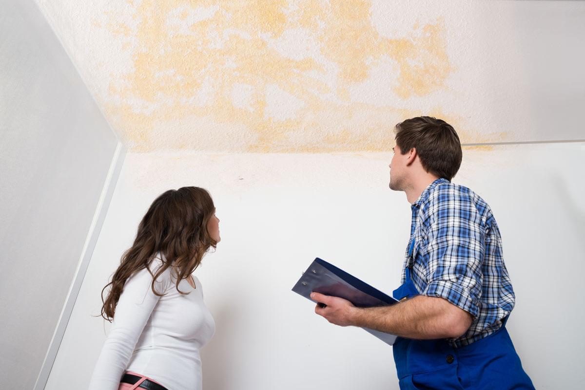 как сделать независимую экспертизу квартиры
