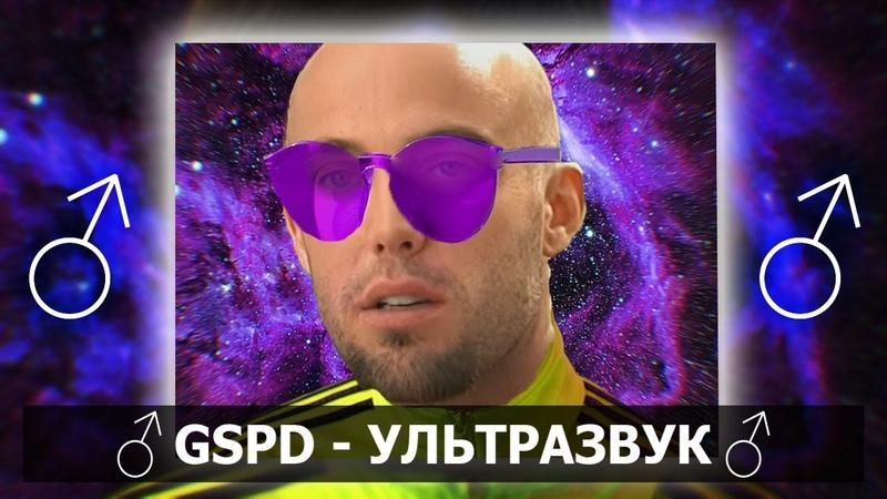 GSPD Ультразвук right version♂ Gachi Remix ft TacoGuy