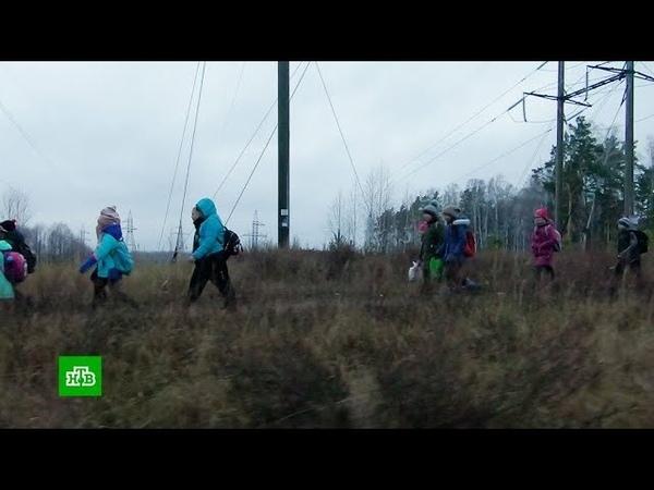 В Кировской области дети ходят в школу через лес, кладбище и железную дорогу