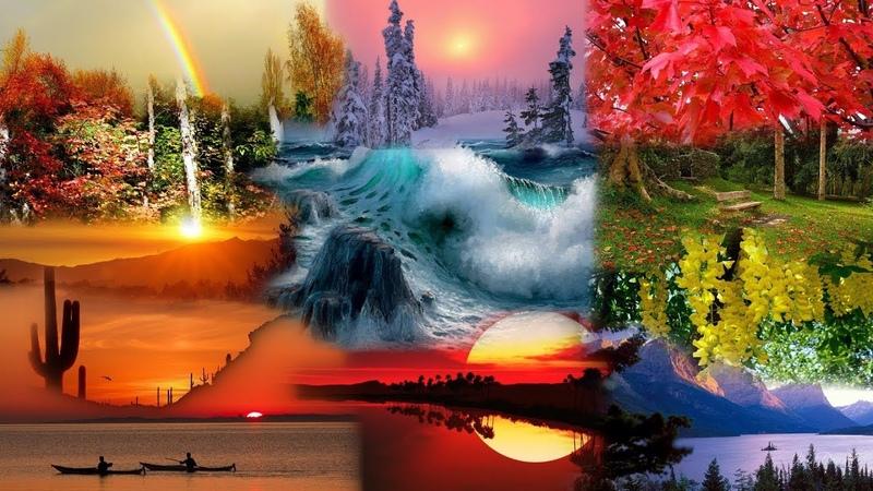 5 А проект Голоса и краски природы