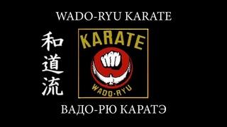 ВАДО-РЮ КАРАТЭ. Кто создал и как возник стиль Вадо-рю каратэ. Боевые искусства мира