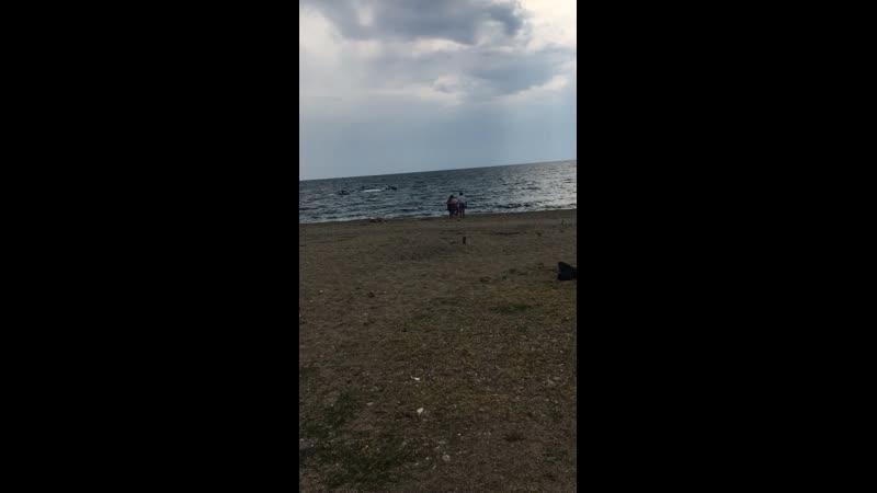 Дикий пляж Абхазия