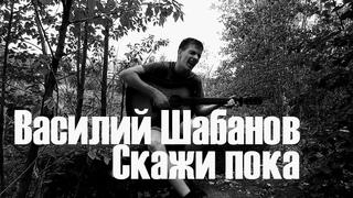Василий Шабанов - Мой путь не был труден / скажи пока ()