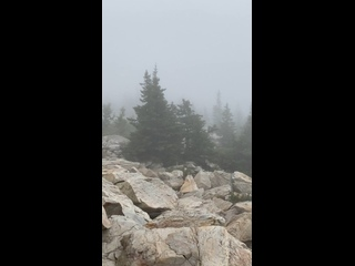 Video by Ksana Puzakova