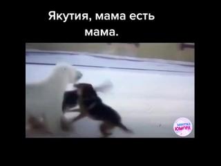 Мама защищает