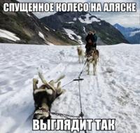 Анатолий Гери фото №26